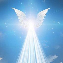 ¿Qué son seres de luz? ¡Descubre su comunicación !